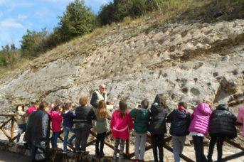 Educazione ambientale, continua l'impegno del Parco con le scuole del territorio aurunco
