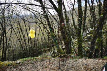 Rimozione cancello abusivo sul sentiero 915c