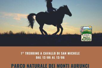 1° Trekking a cavallo di San Michele